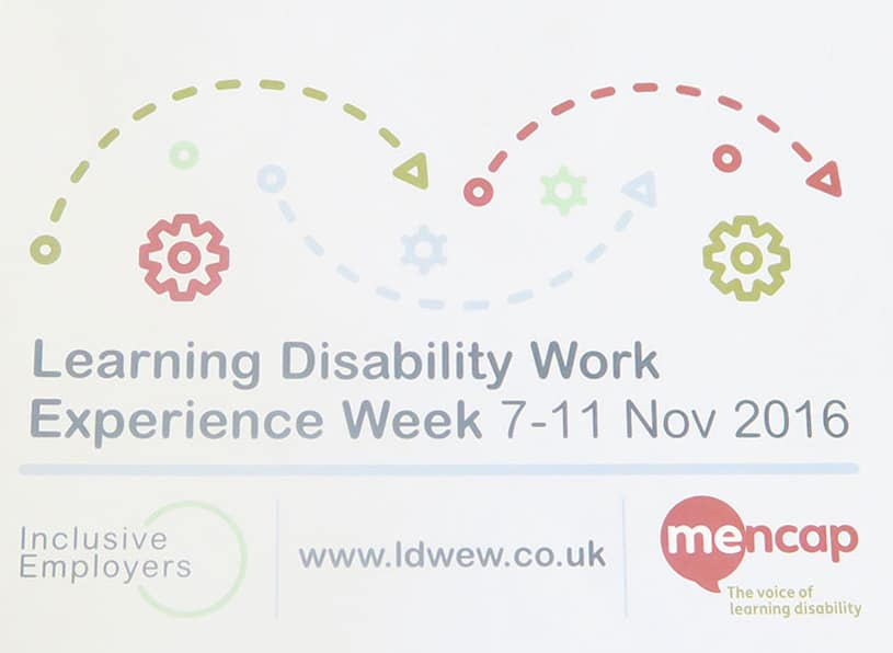 Learning Disability Work Experience